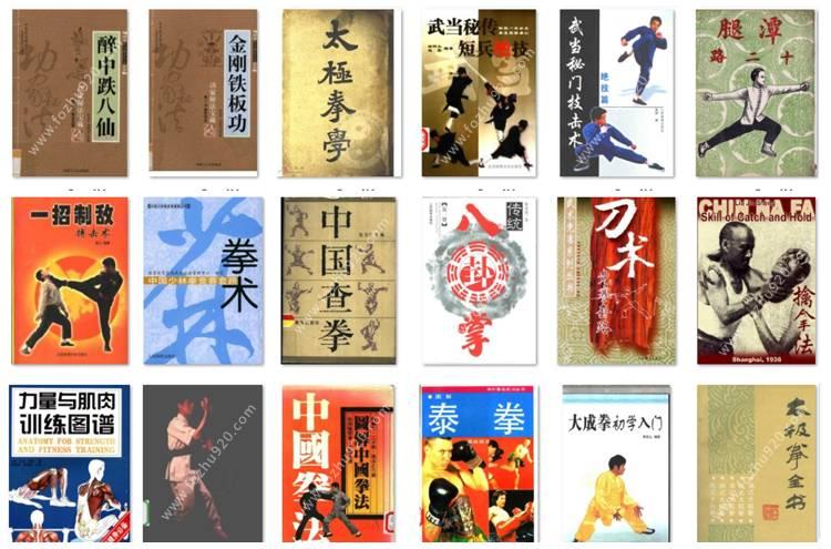 【武术】传统武术与现代搏击术_6200册